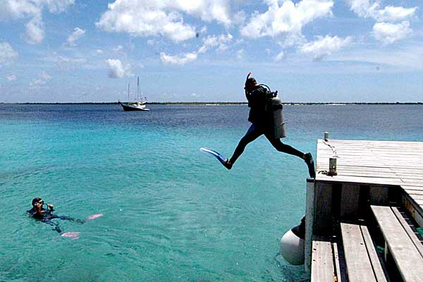 diver takes a giant stride off the dive dock