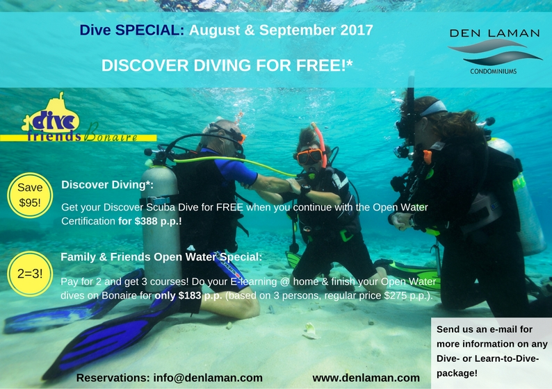 Learn to Dive Specials